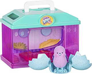 Little Live Pets–Baby Chick with Your corralito Series 2(Famous 700014391)