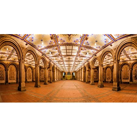 LFEEY 15x8ft Vinyl Bethesda Park Backdrop for Photography Bethesda Fountain in Central Park New York Indoor Decors Wallpaper Holiday Party Backdrop Children Adults Portraits Photo Studio