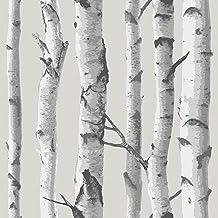 ورق جدران من NuWallpaper بتصميم شجرة البتولا NU1650