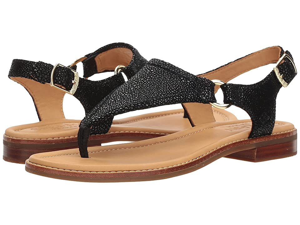 Sperry Abby Sparkle (Black) Women