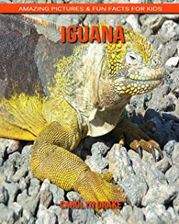 Iguana: Amazing Pictures & Fun Facts for Kids