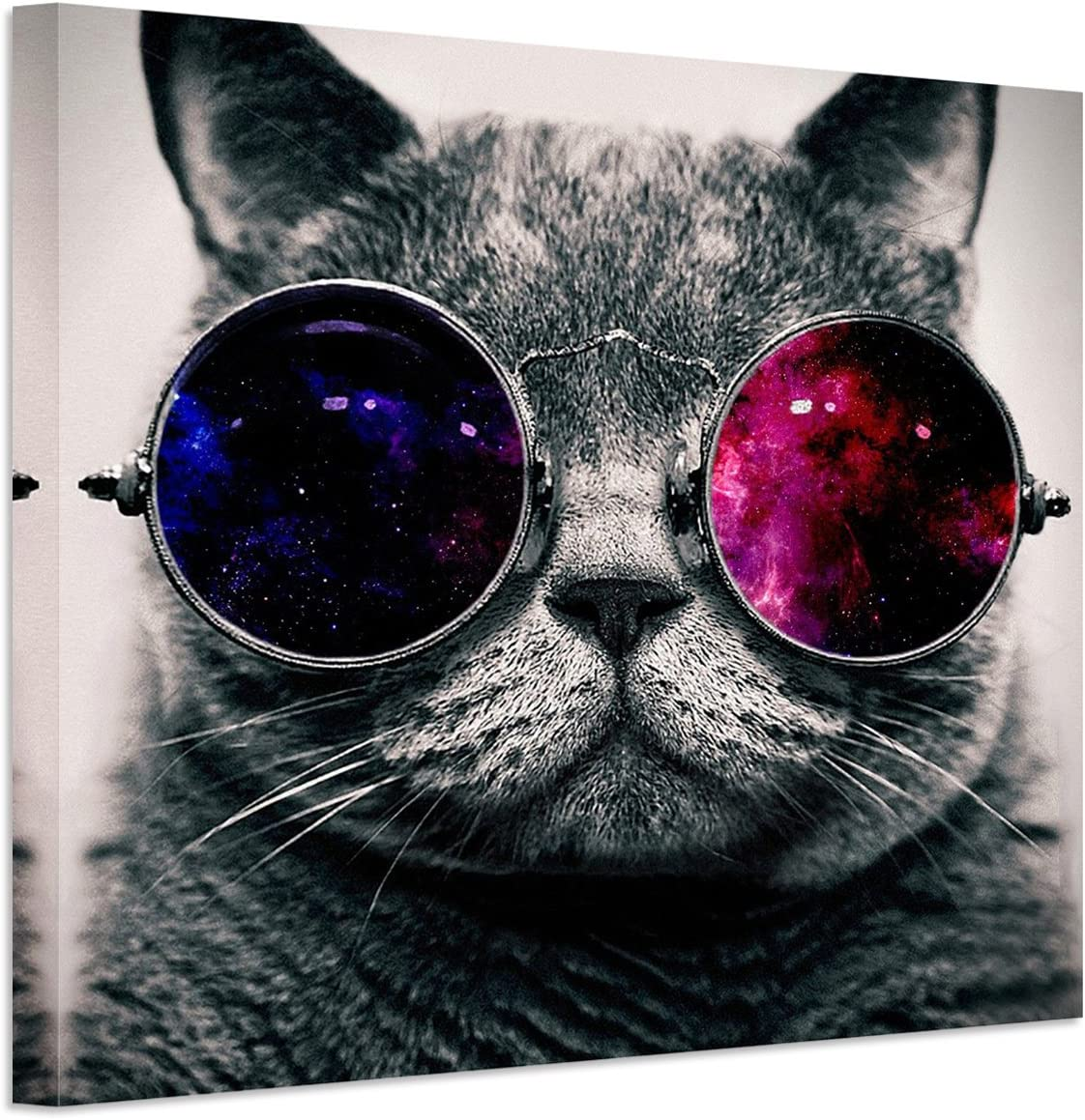 RAIN QUEEN Animals Canvas Wall Art Cat Glasses Mail order cheap Cool Factory outlet Musi Modern