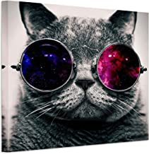 RAIN QUEEN Animals Canvas Wall Art, Modern Cool Glasses Cat Music Art Oil Painting Print on Canvas,Home Decor Painting for Bedroom, Living Room and Kitchen - Framed Ready to Hang 20X20inch