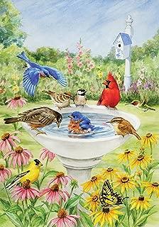 Toland Home Garden Birdy Dippin 28 x 40 Inch Decorative Spring Summer Bird Bath Flower House Flag