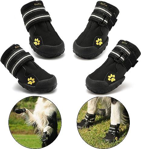 Egyik sem bojkott fűrész chaussure antidérapante pour chien ...