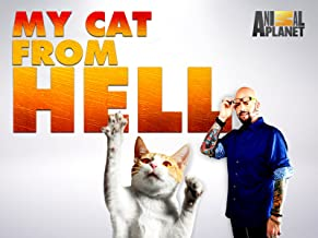 My Cat From Hell Season 8
