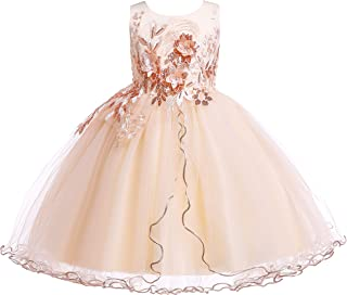 1958115a3e Weileenice 2-12 Years Kids Girls Princess Costume Lace Dress Flower Pageant  Party Dresses