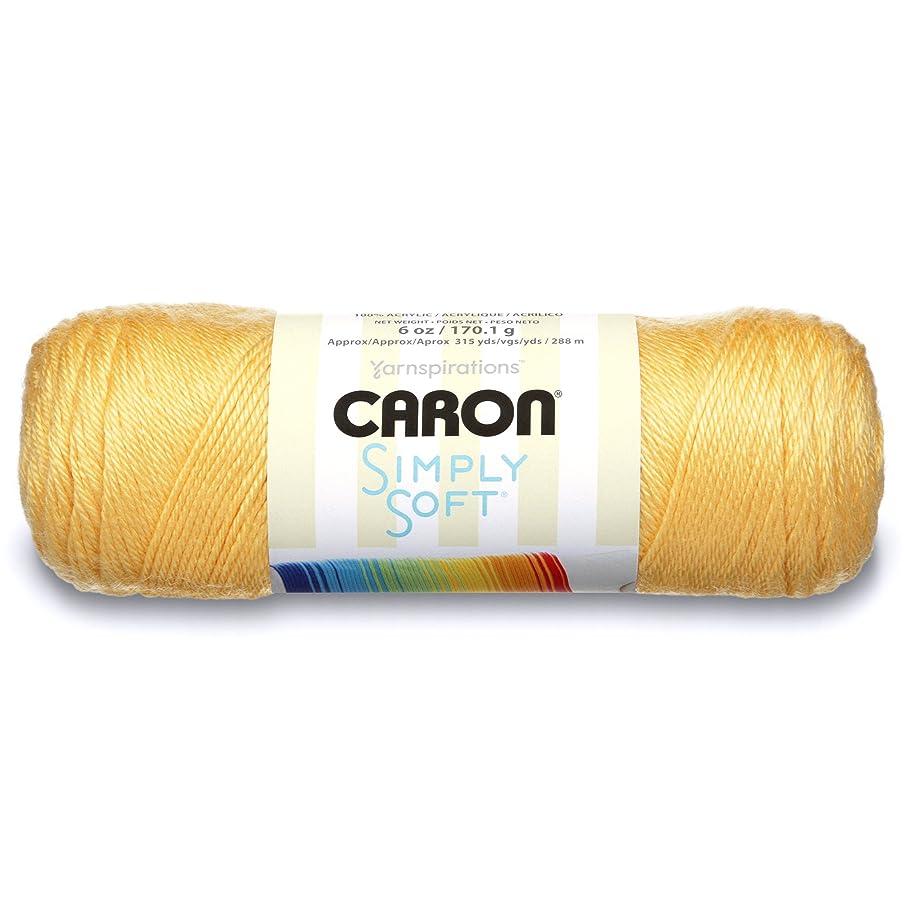 Caron H9700-9755 Simply Soft Sunshine Yarn,