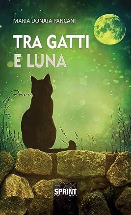 Tra gatti e luna