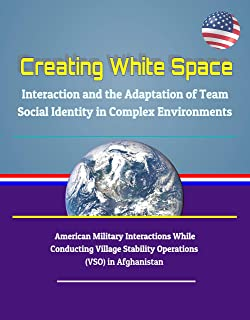 Creating White Space: Interaction and the Adaptation of Team Social Identity in Complex Environments - American Military Interactions While Conducting ... Stability Operations (VSO) in Afghanistan