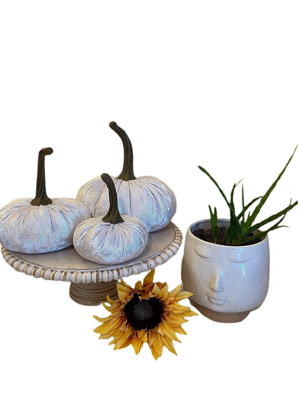 Set Purchase of 3 Crushed Velvet {WHITE Pumpkins; cen OFFer decor SHIMMER} home