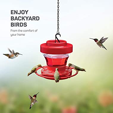 Hummingbird Feeder 16 oz [Set of 2] Plastic Hummingbird Feeders for Outdoors With Ant Guard - Circular Perch With 8 Feeding P