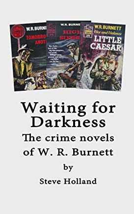 Waiting For Darkness (English Edition)