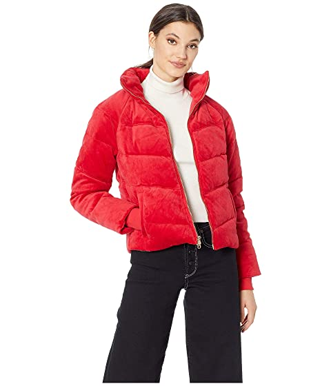 Track Velour Solid Quilted Puffer Jacket, Astor