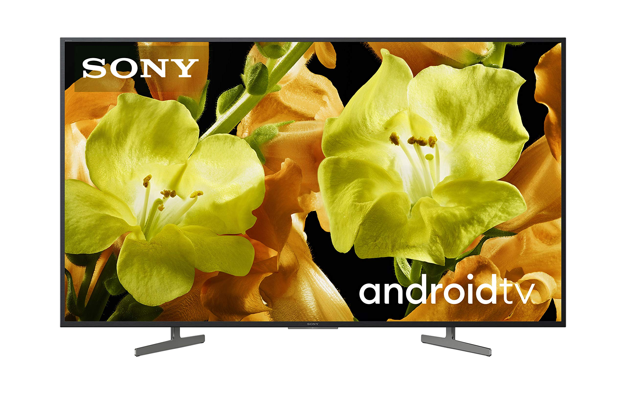 Sony KD-65XG8196BAEP - Televisor 4K HDR de 65