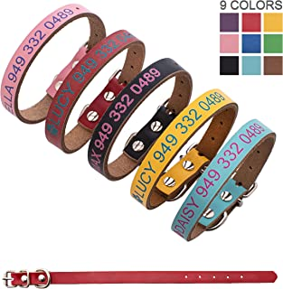 Best pitbull leather dog collars Reviews