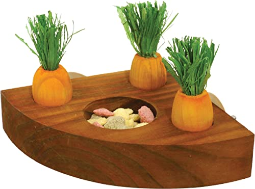 Rosewood Carrot Toy 'n' Treat Holder - Hamster & Small Animal Toy