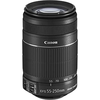 Canon 望遠ズームレンズ EF-S55-250mm F4-5.6 IS II APS-C対応