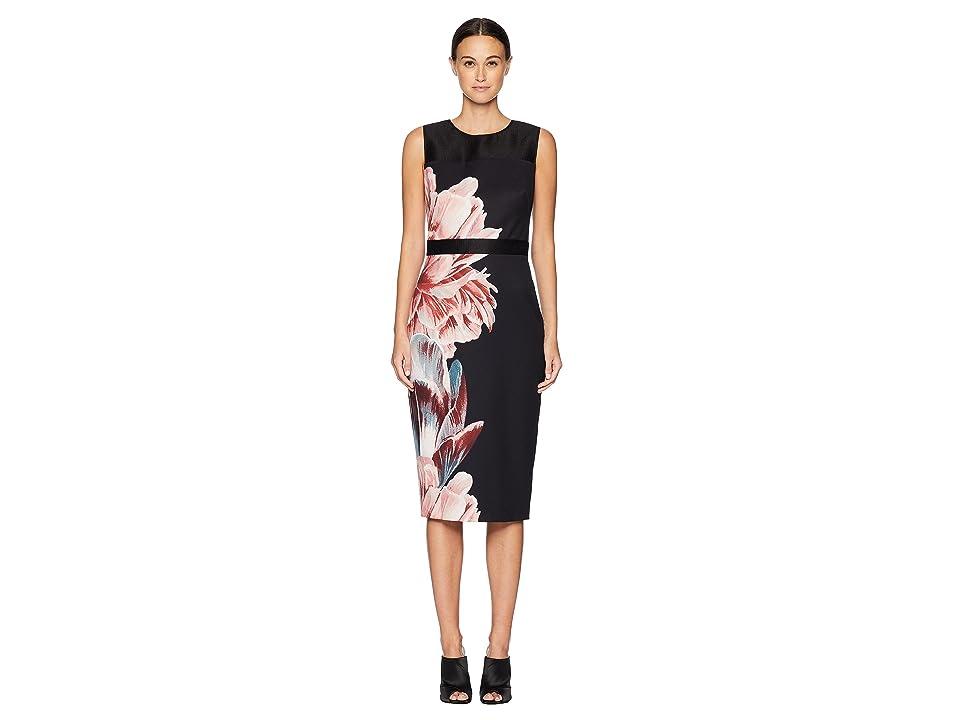 Ted Baker Xanadu Tranquility Sheer Panel Dress (Black) Women
