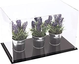 Better Display Cases Versatile Acrylic Clear Display Case - Medium Rectangle Box with Black Base 14