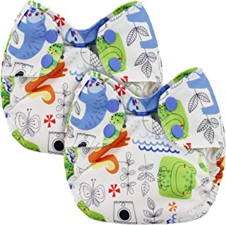 Blueberry Newborn Simplex All in One Cloth Diapers, Bundle of 2, Made in USA (Sloth)