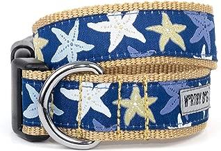 The Worthy Dog Starfish Sea Star Pattern Adjustable Designer Pet Dog Collar, Blue, Medium 21858-4008MD