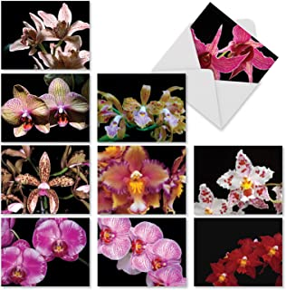 """10 All-Occasion Note Cards with Envelopes (4"""" x 5 ¼""""), 'Orchid Nights' Blank Greeting Cards, Assorted Stationery for Weddings, Baby Showers, Birthdays #M1734BN"""