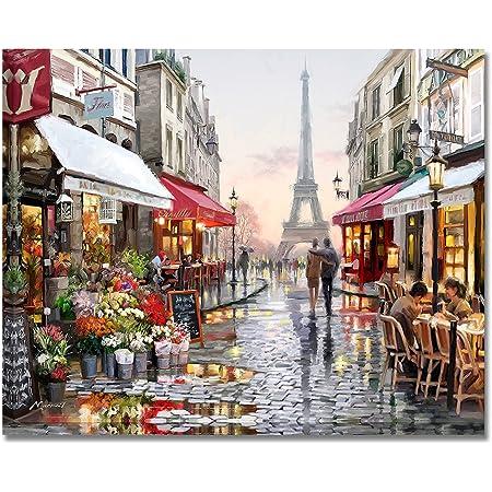 油絵 数字キット 手塗り MUNIZ デジタル油絵 DIY絵 40x50センチ 塗り絵 動物 風景 (パリ)