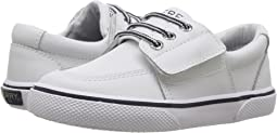 Sperry Kids Ollie Jr. (Toddler/Little Kid)