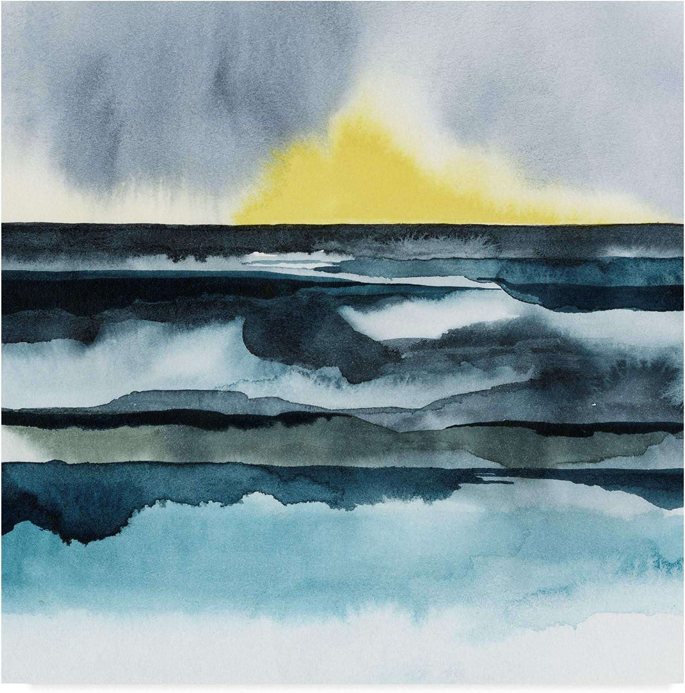 Trademark Fine Art Seaside Mist I by Grace Popp, 14x14