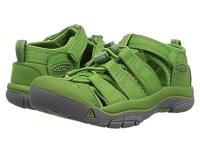 Keen Kids Newport H2 (Toddler/Little Kid) (Fluorite Green) Kids Shoes