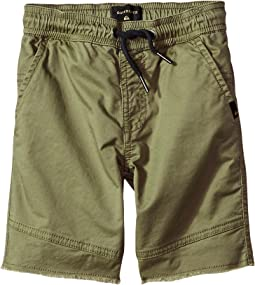 Quiksilver Kids - Foxoy Shorts (Toddler/Little Kids)