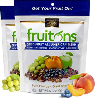 Traina Home Grown Fruitons All American Blend Fruit Mix - Non GMO, Gluten Free, Kosher Certified, 6 oz pouch (pack of 2)