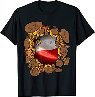 USA Poland Flag Inside Proud Polska Polish American Heritage T-Shirt