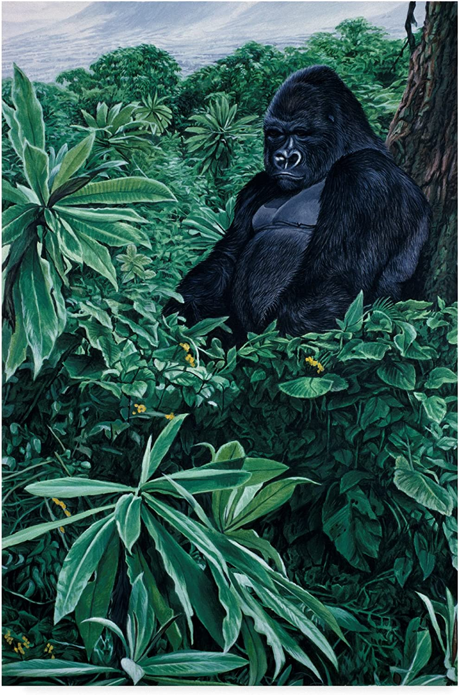 Gorilla by Ron Parker, 12x19Inch