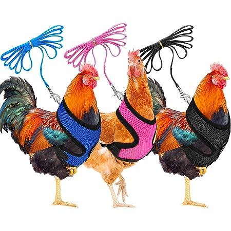 Small Chicken Harness with Lead Leash Fabric//Fleece lined Adjustable Blue Stars Handmade UK Small Medium Large Hen