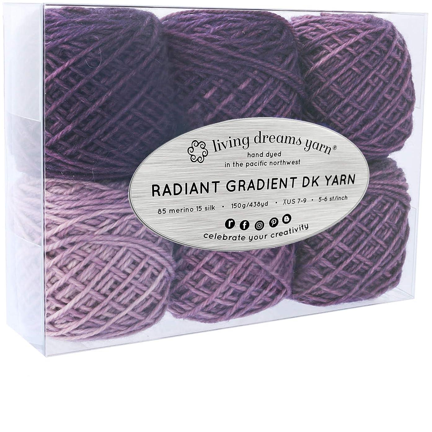 Living Dreams Radiant Gradient DK Yarn. Super Soft Merino Silk. USA Hand Dyed: Purple Mountains