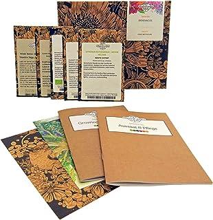 Magic Garden Seeds Pasto de Abejas - Kit Regalo de Semillas con 5 Plantas Que atraen a Las Abejas
