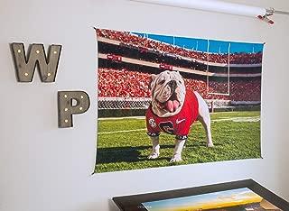 UGA Georgia Bulldogs: Photo Tapestry Wall Art Poster Print - UGA X Off The Chain Mascot