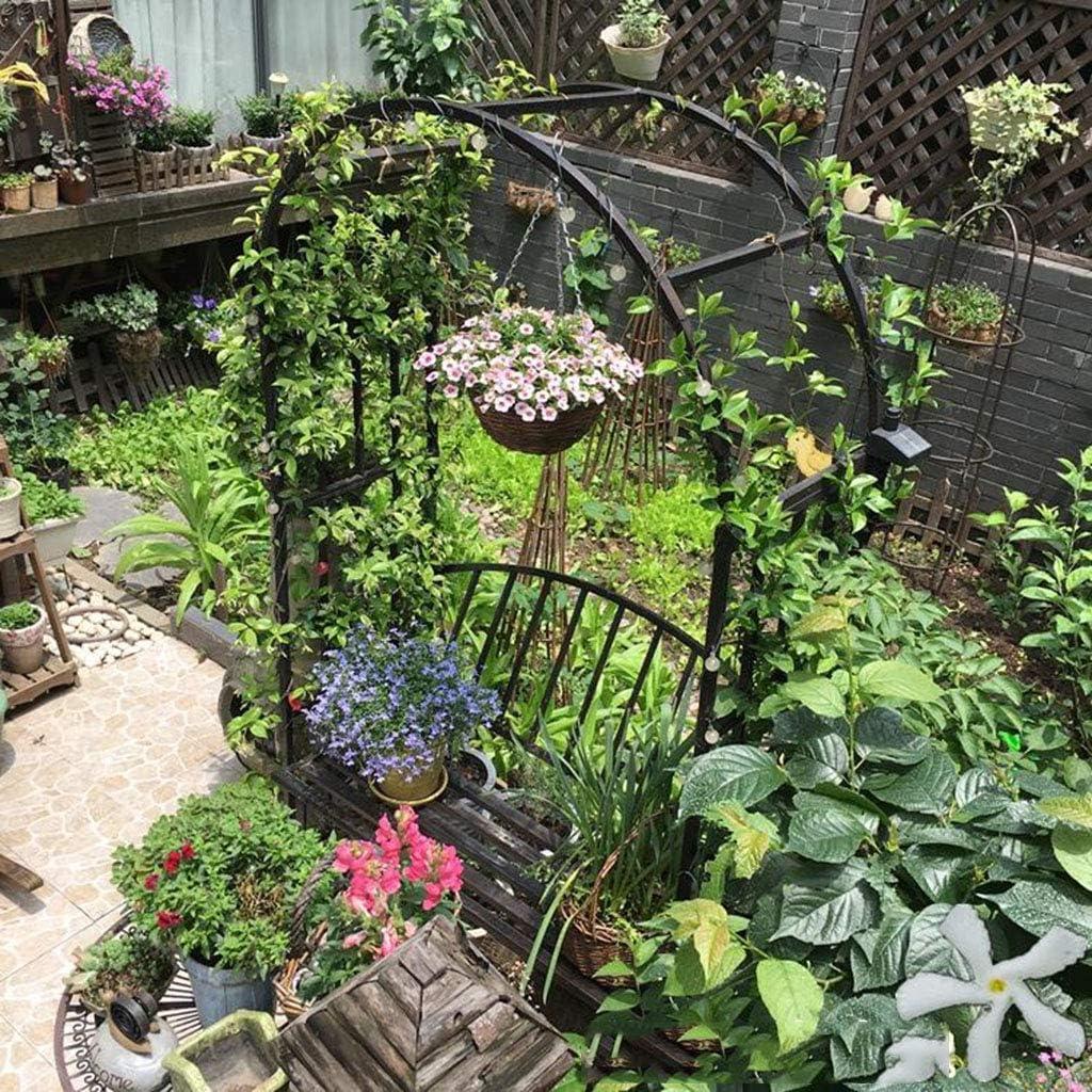 Arches-Arches de Jardin avec Portes Jardin ext/érieur avec pelouse Arbres de Jardin pour diverses Plantes grimpantes