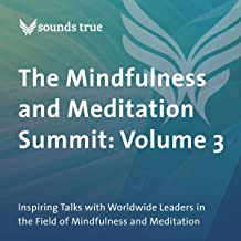 The Mindfulness and Meditation Summit: Volume 3: Inspiring Talks with Worldwide Leaders in the Field of Mindfulness and Meditation