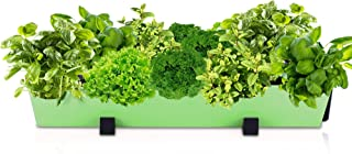 Indoor Herb Garden Planter Pot – Flower Plant Pots Wall Decor & Gardening Kit with Hanging Bracket - Plants Thrive with No Effort, Ideal for Busy Lifestyles - Standing Modern Succulent Pots (1 Lime)