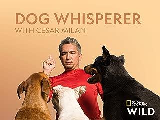 Dog Whisperer with Cesar Millan Season 4