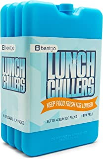 Best lunch cold pack Reviews