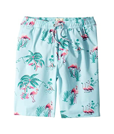 Rip Curl Kids Del Boca Volley Boardshorts (Big Kids) (Light Green) Boy