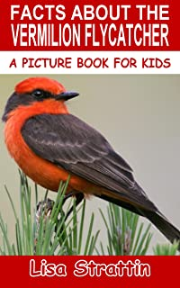 Facts About The Vermilion Flycatcher (A Picture Book For Kids 53)