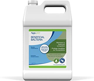 Aquascape Beneficial Bacteria for Pond and Water Features, Liquid, 1-Gallon Bottle | 98885