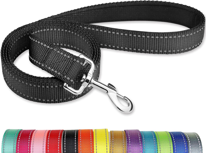 Joytale 5FT Surprise price Dog Leash Double-Sided Reflective Dogs Ranking TOP9 Nylon Leashe