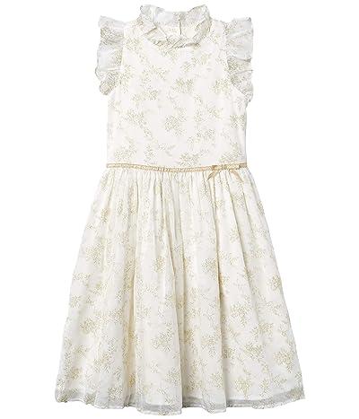 Janie and Jack Gold Glitter Chiffon Dress (Toddler/Little Kids/Big Kids) (Gold) Girl