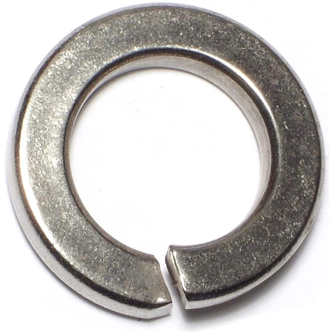 Hard-to-Find Fastener 014973188412 Lock Washers, 1